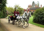 Horse and carriage on the drive
